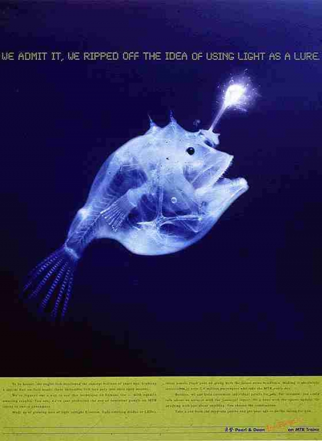 Pearl & Dean Led Advertising Panels: Angler Fish 1