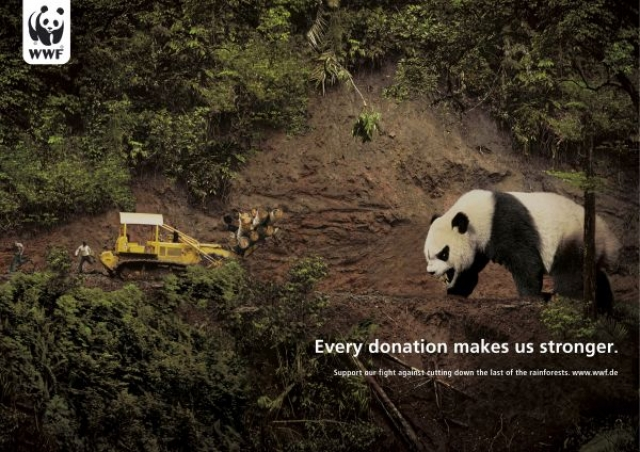 an analysis of the wwf advertisement for donating money