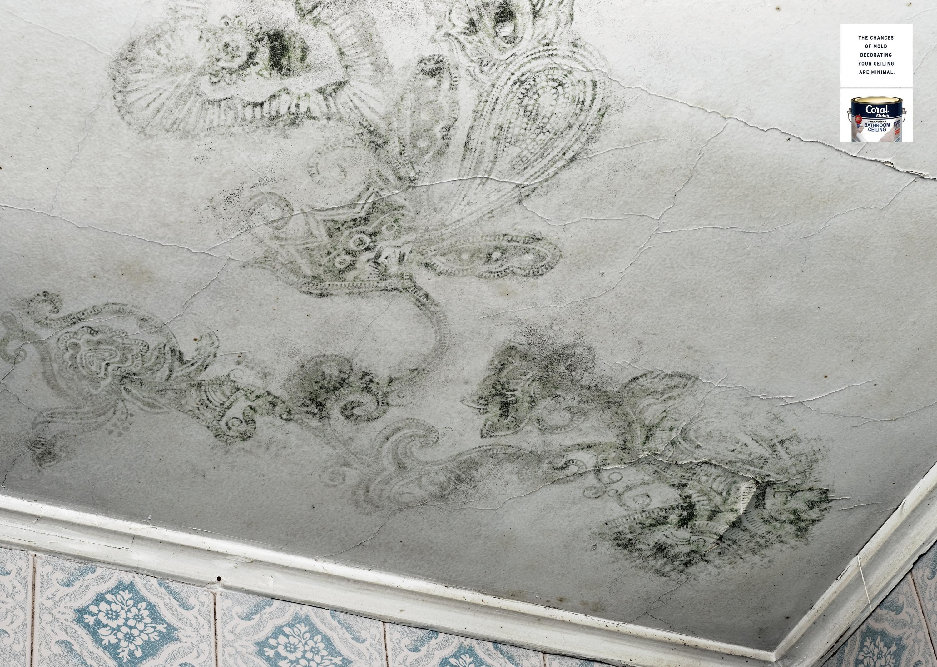 Mold In Shower Paint bathroom ceiling paint – laptoptablets