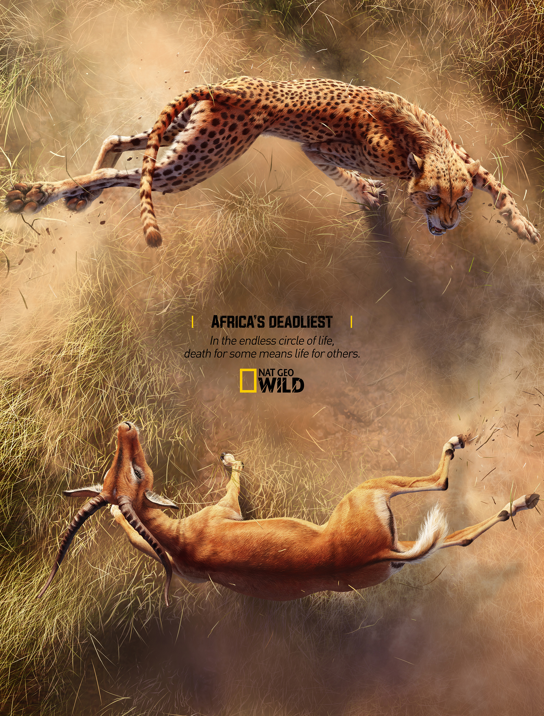 e83c724839 Adeevee   Only selected creativity - National Geographic: Africa's ...